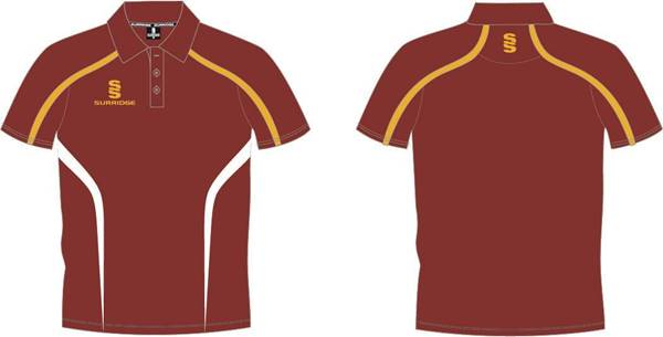 Picture of MAROON/AMBER POLO